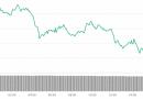 Том Ли: биткоину не обязательно расти каждый день, чтобы достичь $25 000