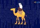 Власти США изъяли $19 млн в деле, связанном с Silk Road
