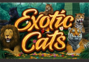 Минимальные / максимальные ставки в слоте Exotic Cats, RTP, волатильность и максимальный выигрыш.